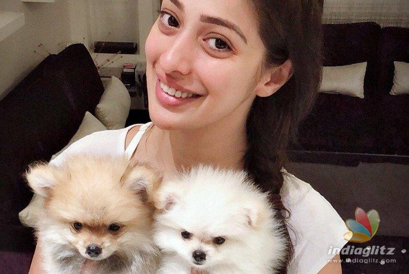 Raai Laxmi announces that she has become a grandmother