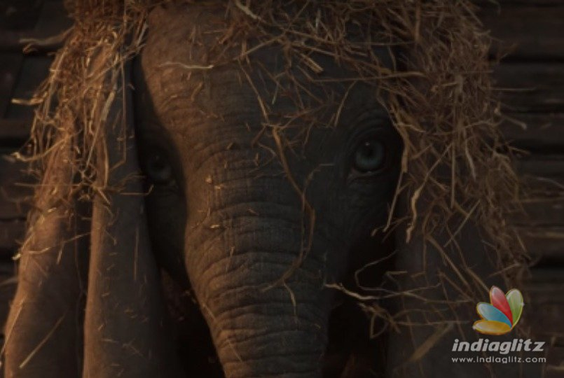 Cuteness Overloaded ! The flying baby elephant Dumbo trailer is here